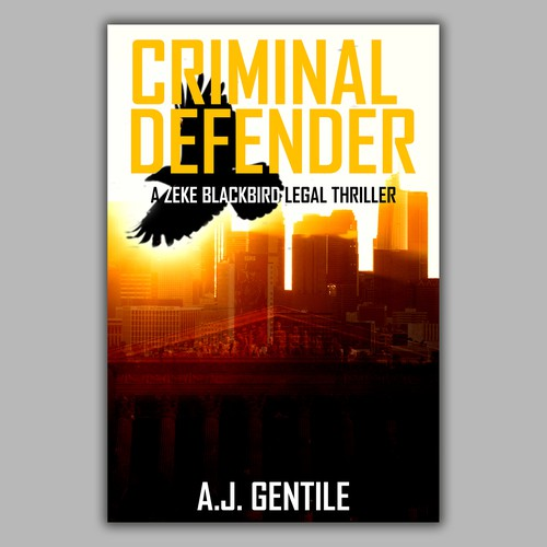 Criminal defender