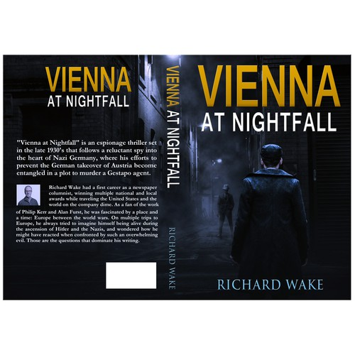 Vienna at Nightfall 2
