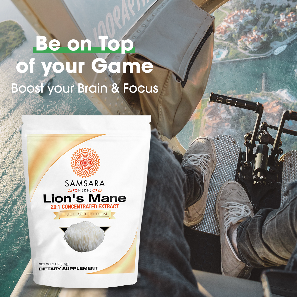 Lion's Mane Amazon Listing Images