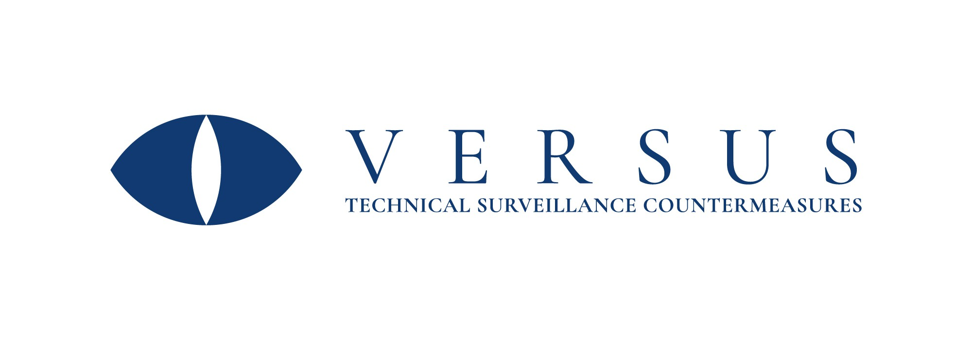 Professional security consulting firm needs logo & biz card