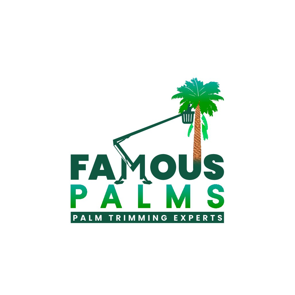 Florida Palm Tree Trimming Company in Need of Logo. Image of Palm Tree Being Trimmed by Man in Lift.