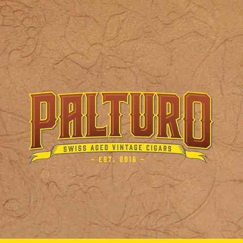 Logo concept for Palturo