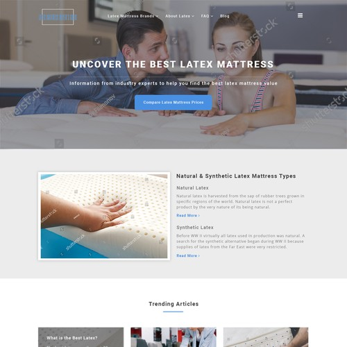 Responsive theme based wordpress website design