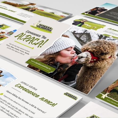 Business presentation of alpaca experiences