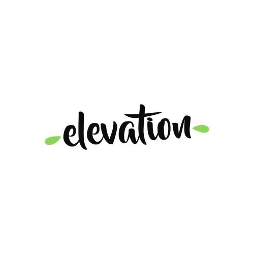 Logo Concept for elevation.
