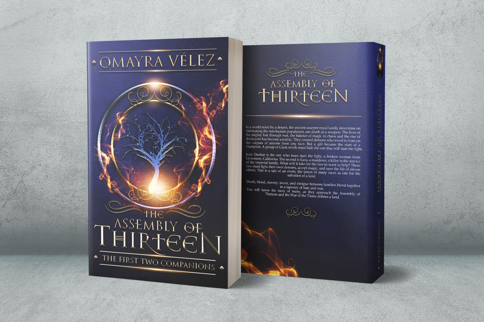 Need cover for a the first book of a High Fantasy series