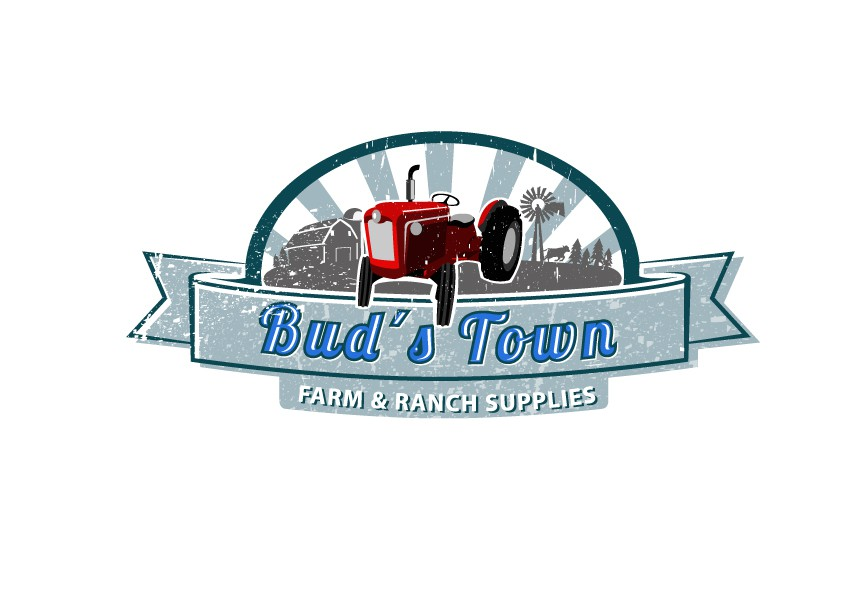 Create the next logo for bud's town
