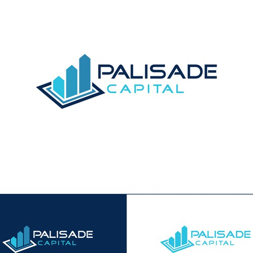 Logo Concept for Palisade Capital