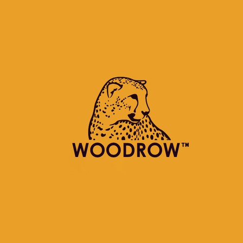 Logo for Outdoor Retail Store
