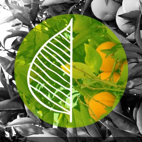 Organic logo website