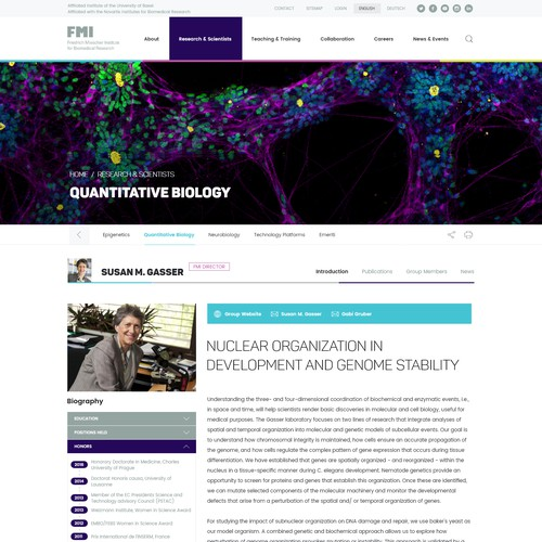 Science Institute Web Design