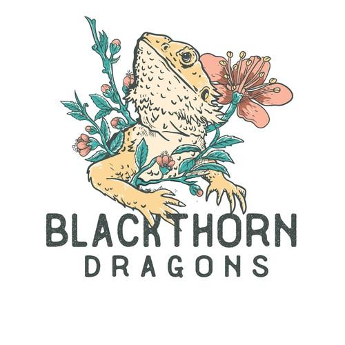 blackthorn dragons