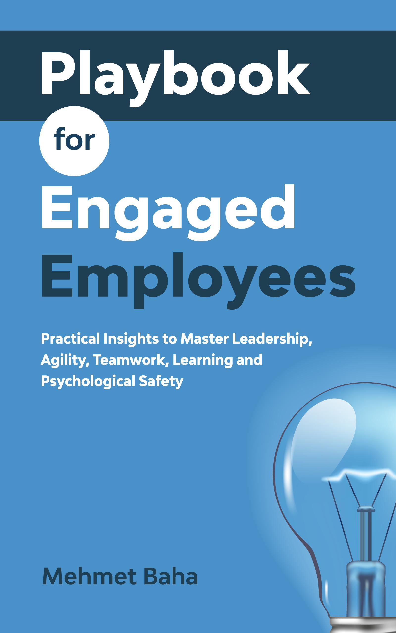 Business Book Cover (Kindle E-Book)