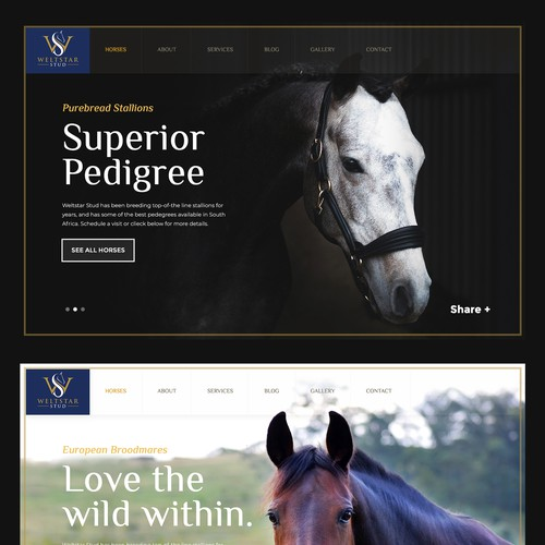 Luxury Stallion Stud farm Website