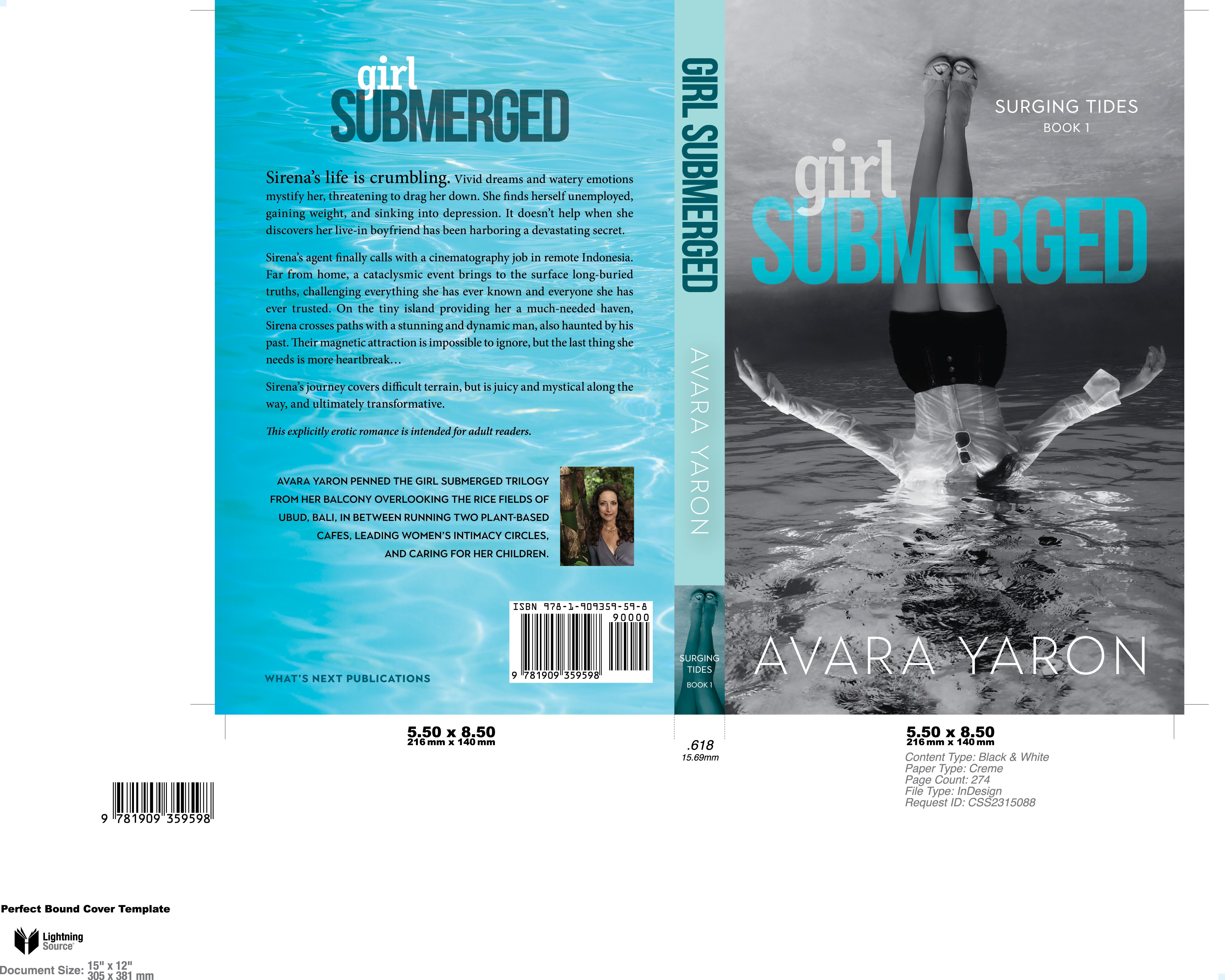 Design a cover for a sexy, thought-provoking novel, (girl) Submerged.