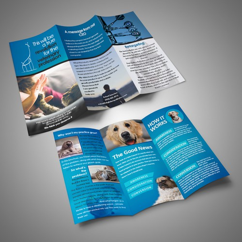 A4 trifold brochure concept