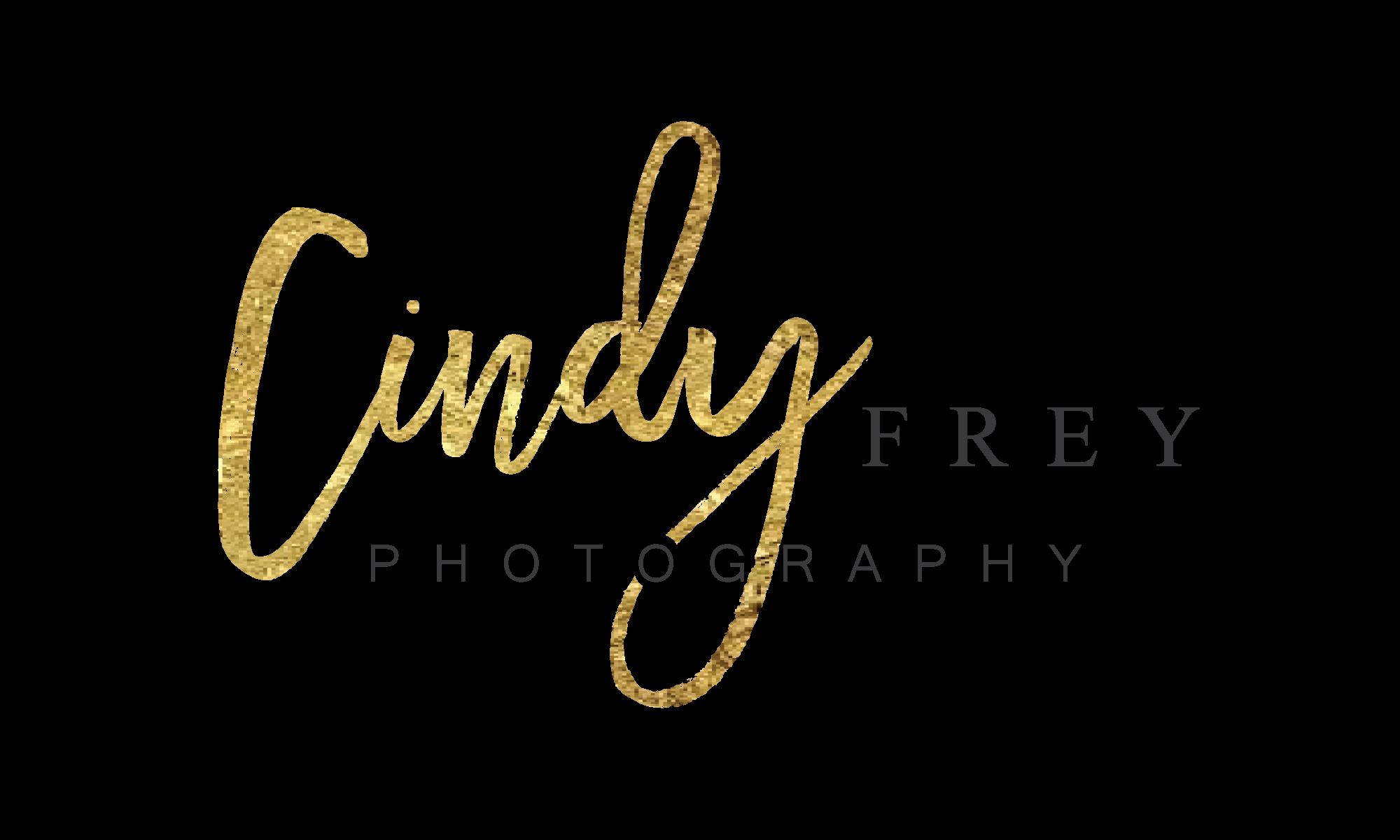 Create a timeless classy logo for wedding photographer