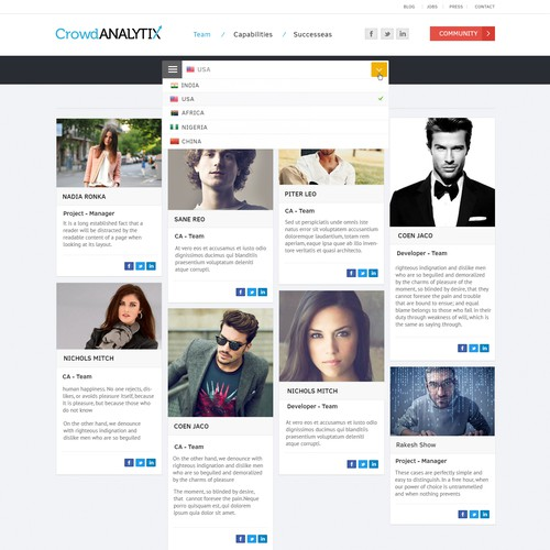 CrowdANALYTIX's website