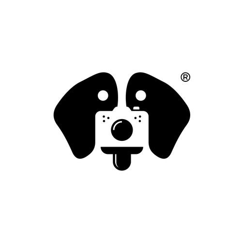 Filmmaker/Photographer looking for sleek logo
