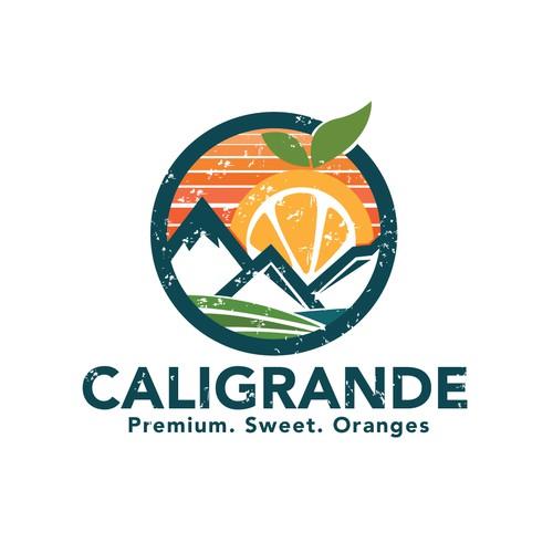 Fun Logo for Orange farm