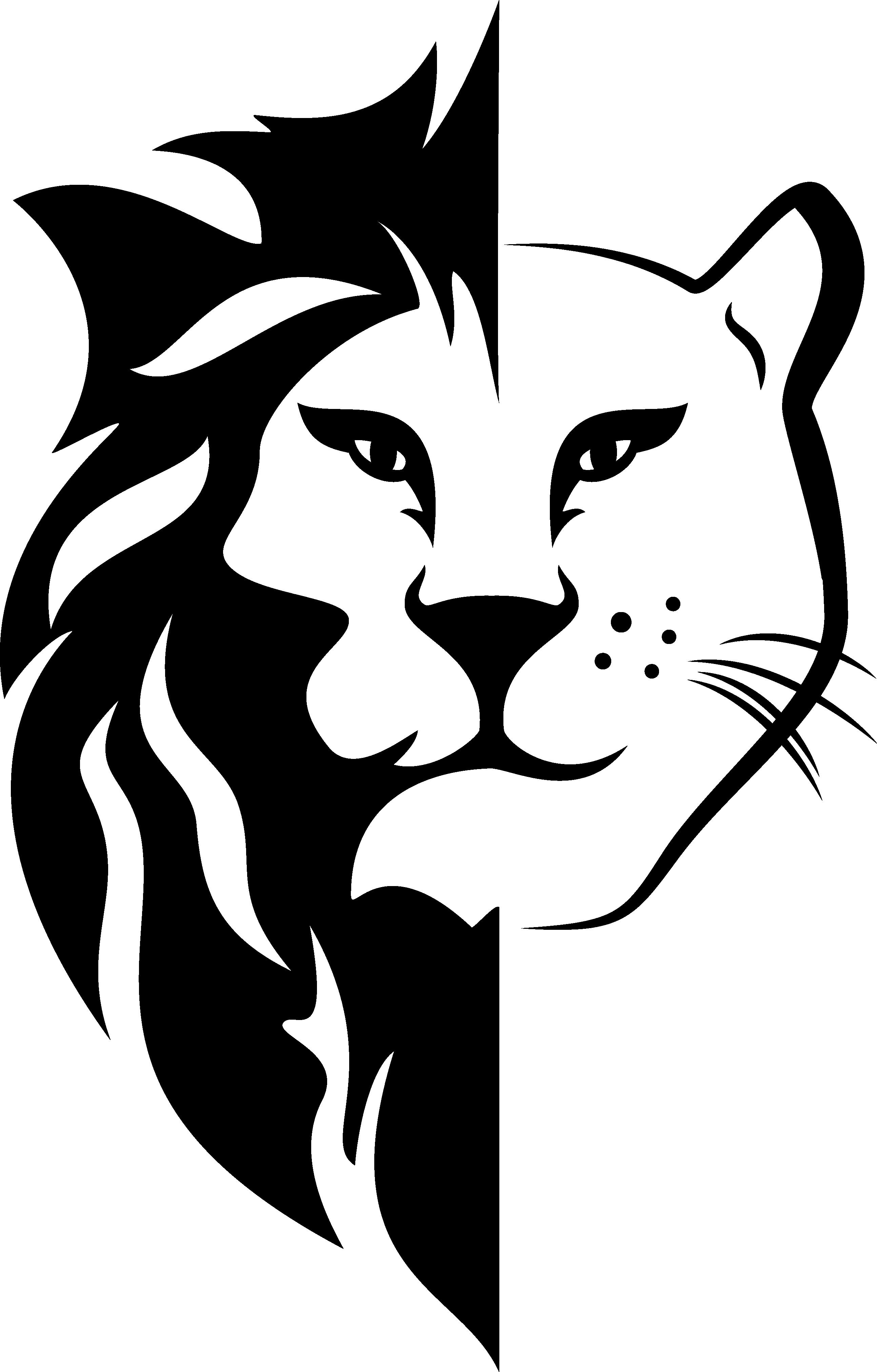 Li&Ness Logo