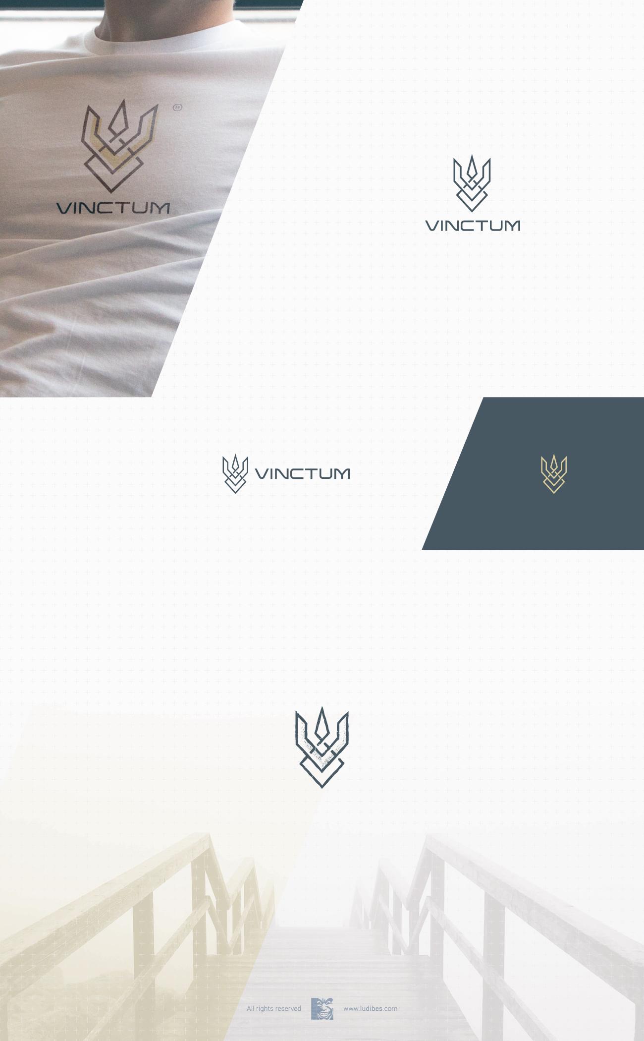 Vinctum Brand Identity Design