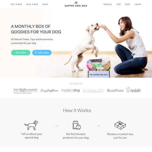 Homepage for Pet Subscription Startup