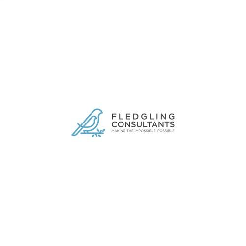 Logo concept for Fledgling Consultans