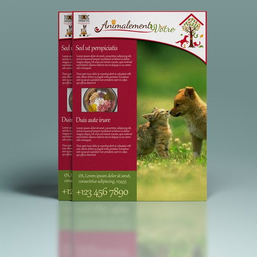 Create a flyer to promote the marketing of Dr. Jutta Ziegler's pet food in Switzerland