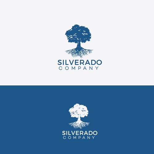 Create a strong logo and business card for an alternative asset investment company