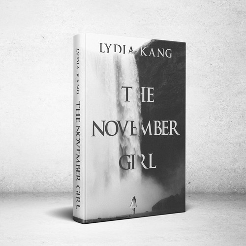 Book Cover for The November Girl