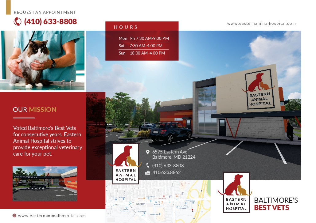 Eastern Animal Hospital Brochure