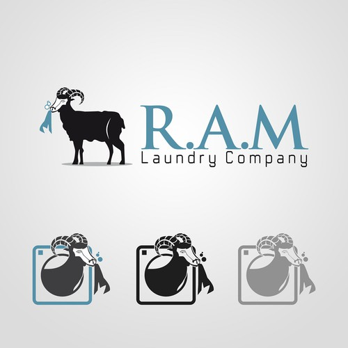 Create our company logo for our laundry equipment company!!