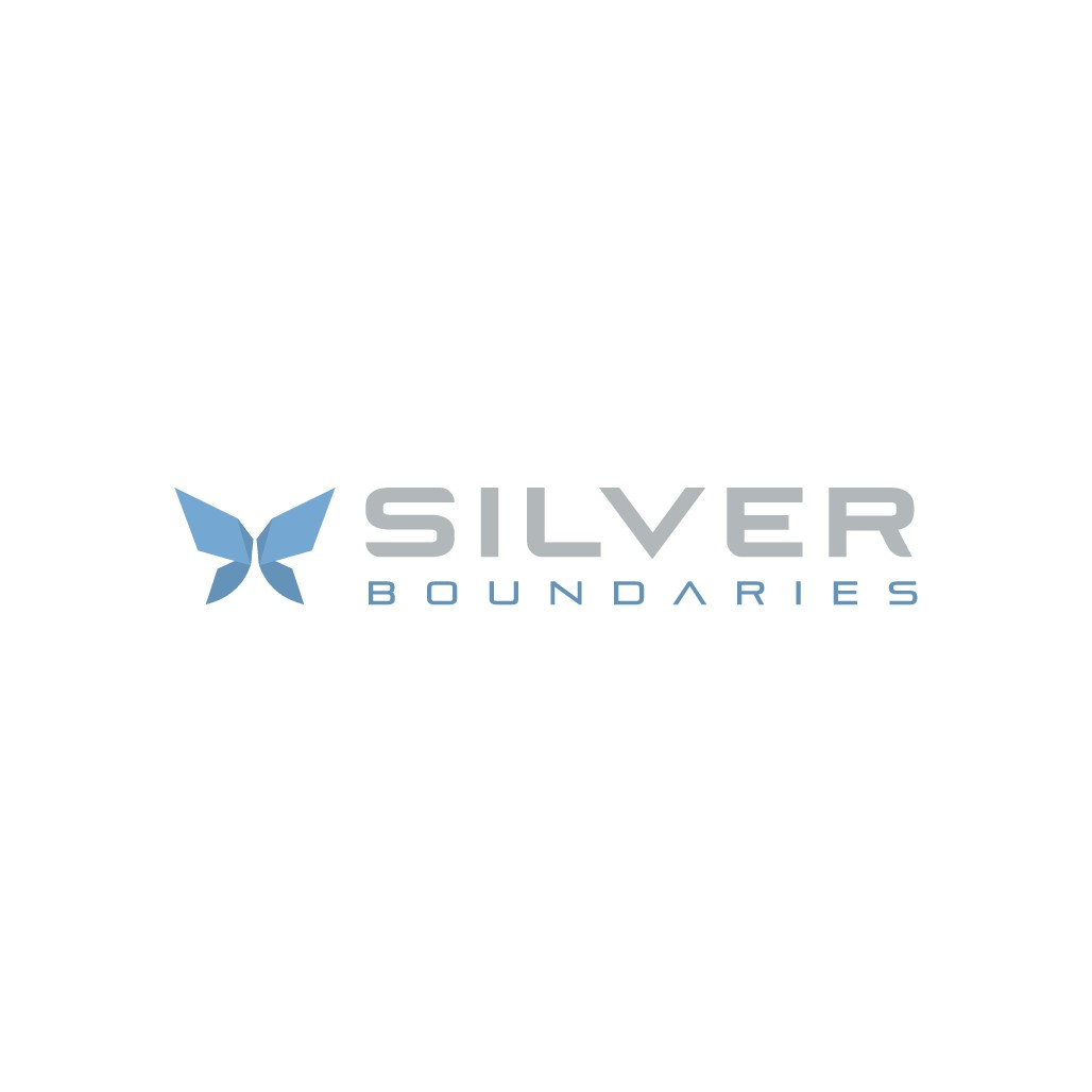 Create a corporate logo for Silver Boundaries
