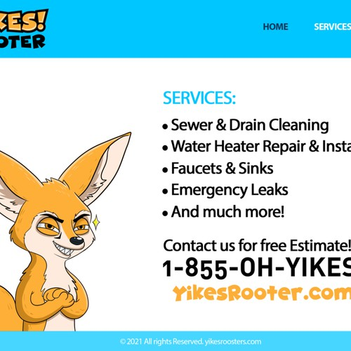 Website design for Yikes Rooter.