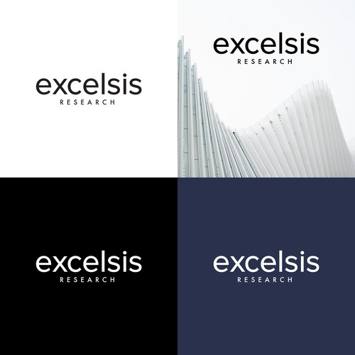Logo Concept for Excelsis Research