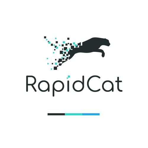 Logo concept for RapidCat