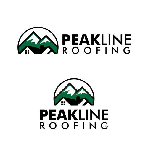 Bold Logo Concept for PEAKLINE ROOFING