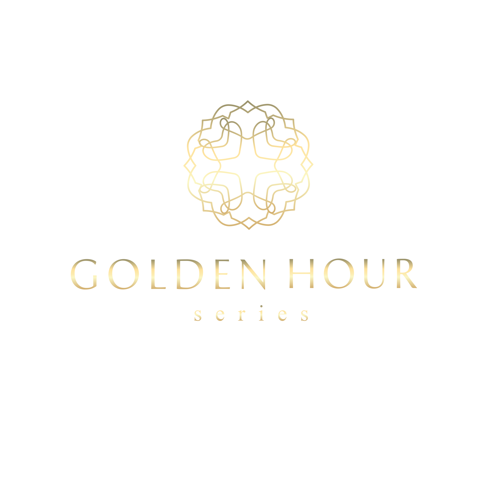 Luxury and modern logo for a online photography series