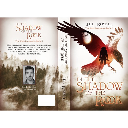 In the Shadow of the Rook Book Cover