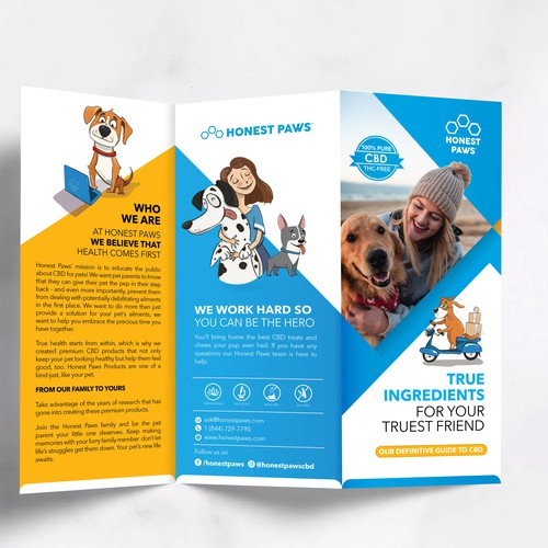kick-ass tri-fold brochure