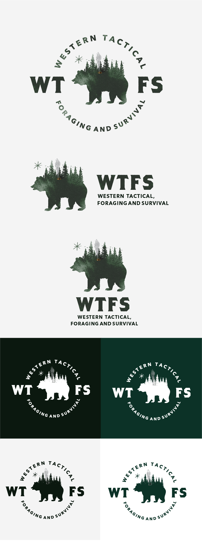 Logo design for WTFS