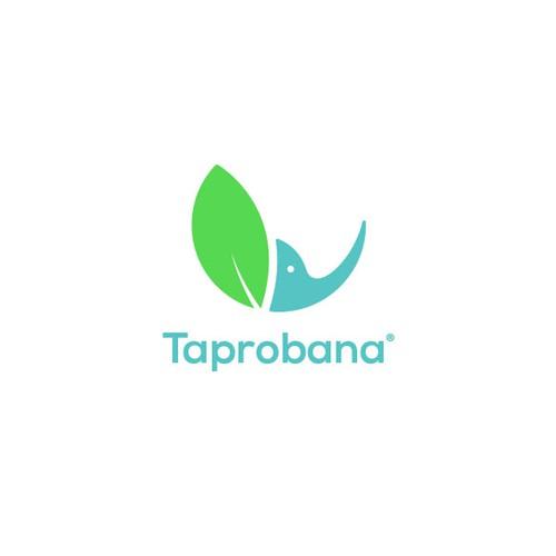 Logo Concept For Organic Herbs Market