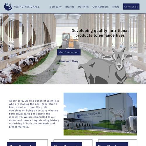 Website with custom illustrations