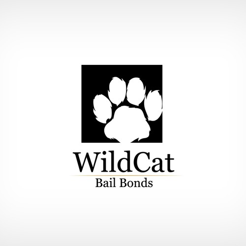 WildCat Bail Bonds