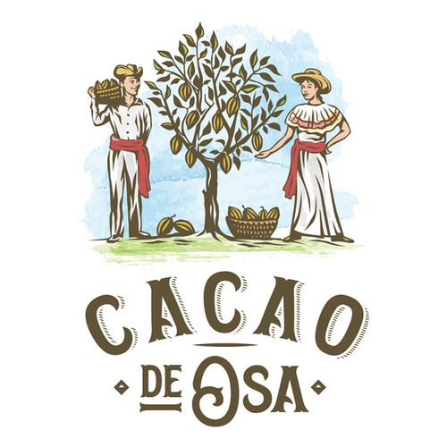 Logo concept for Cacao Cooperative