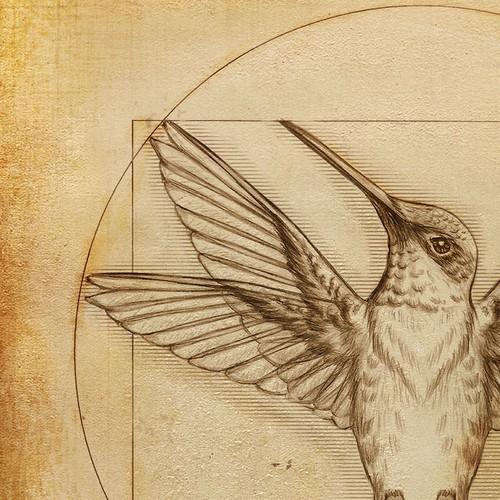 DaVince-Hummingbird
