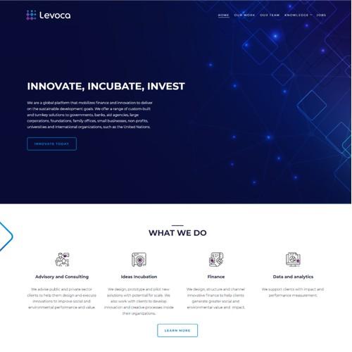 Logo and hosted web design for Levoca