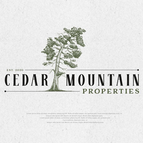 CEDAR MOUNTAIN PROPERTIES