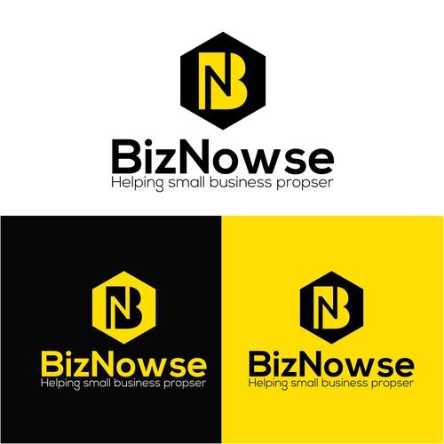 BizNowse Logo Design